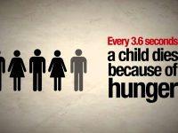 Международен ден за борба с глада